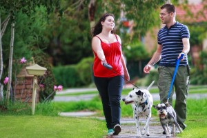 couple-walking-dog-in-park1