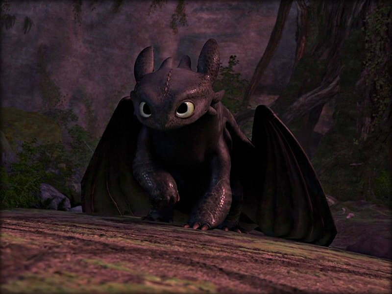 -Toothless-how-to-train-your-dragon-32987240-800-600